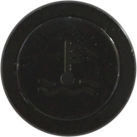 Picture of Flush Bezel Black LED Warning Light WATER TEMP